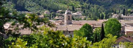 Escale Plantes et Bien-Être Buis-les-Baronnies / Montbrun-les-Bains