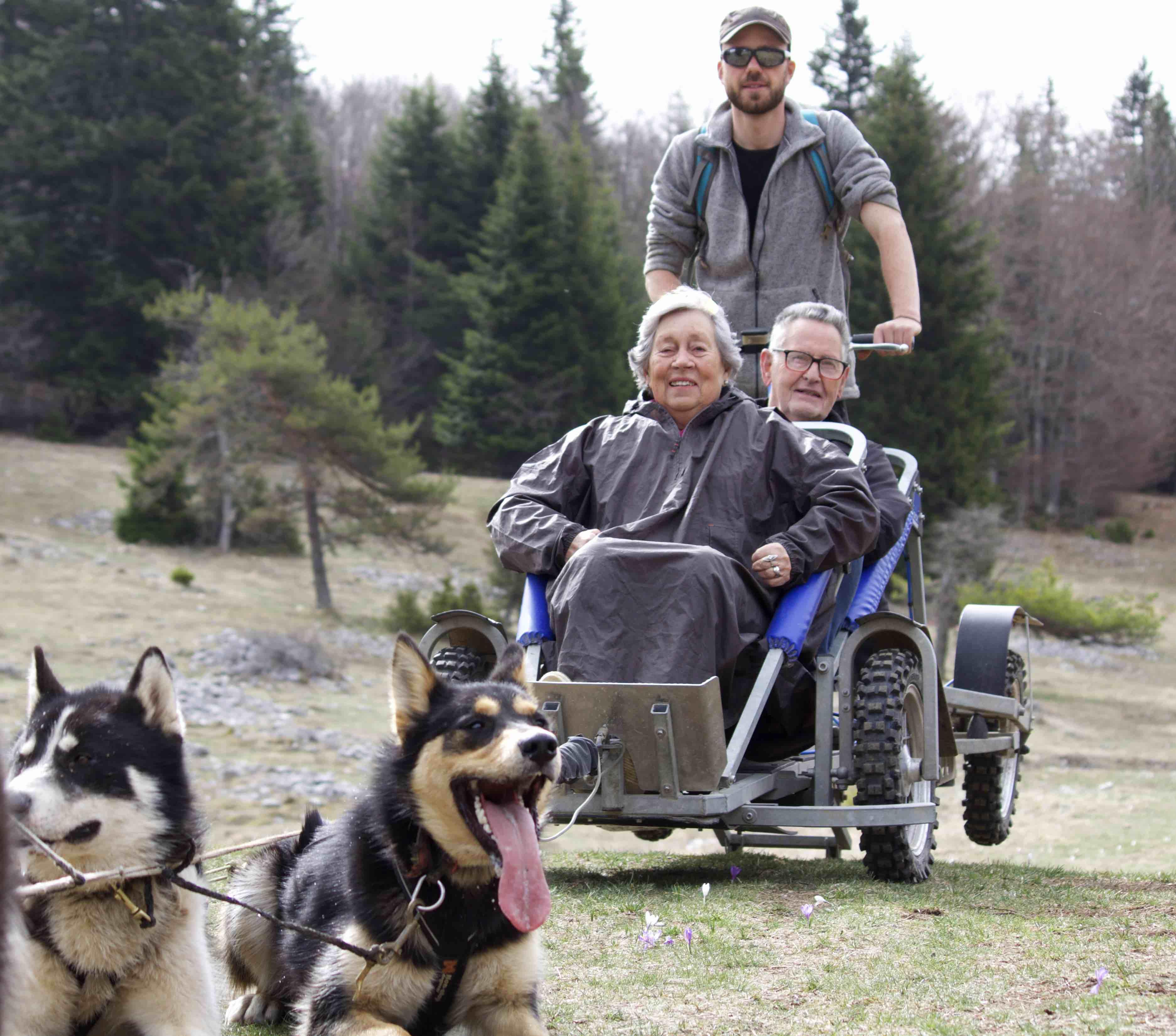 Balade chien de traineau cani-kart