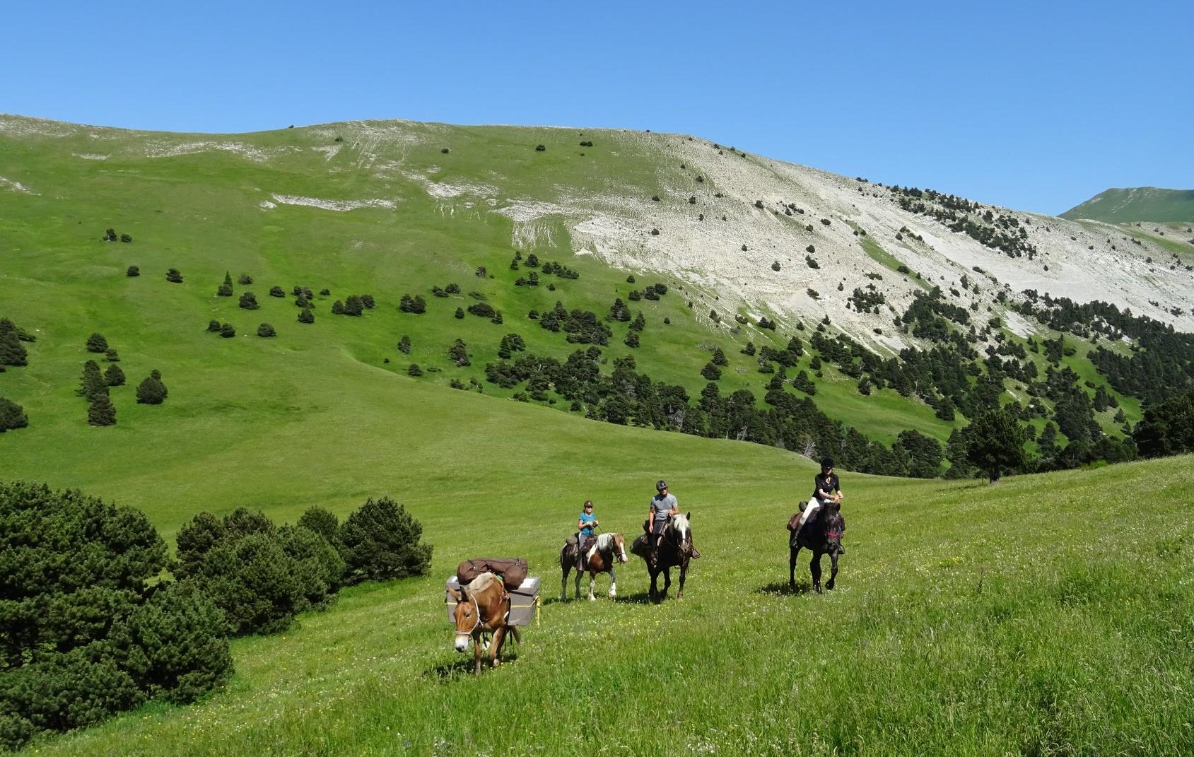 Séjour équestre Les hauts plateaux du Vercors du 25 au 29 Juin 2019 La Roche des Arnauds