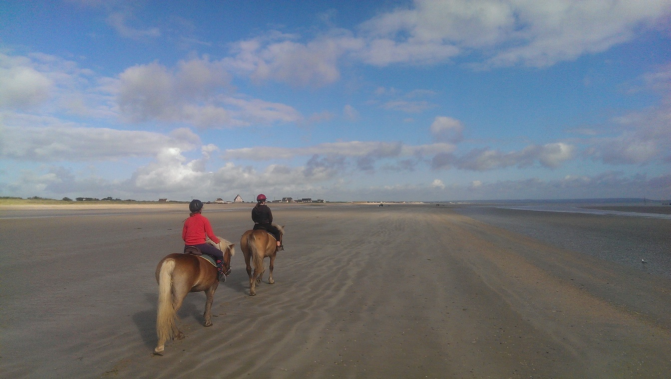 Promenade plage HORS SAISON - 2h y compris transport  (maxi 3 cavaliers)