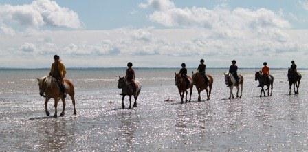 Promenade plage HORS SAISON - 3h (mini 4 cavaliers)