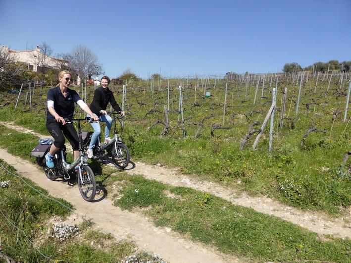 Tour à vélo d'un vignoble bio de Nice (en Anglais)