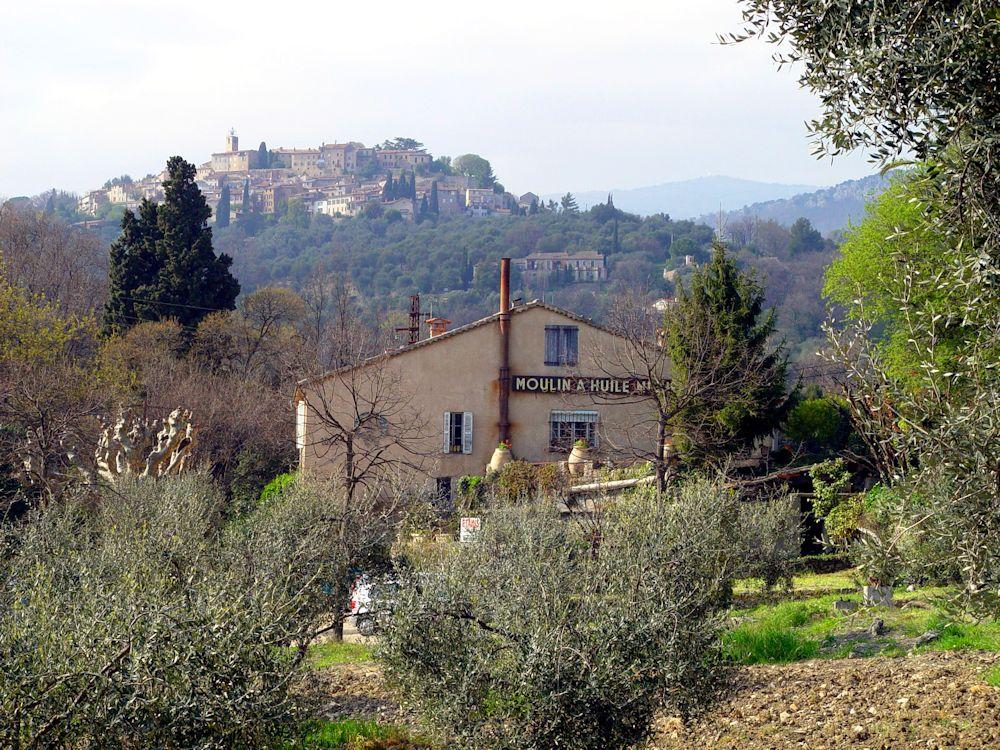 Tour Demi-Journée : Dégustations Provençales