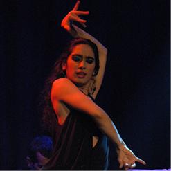 """La Danse Flamenca"""