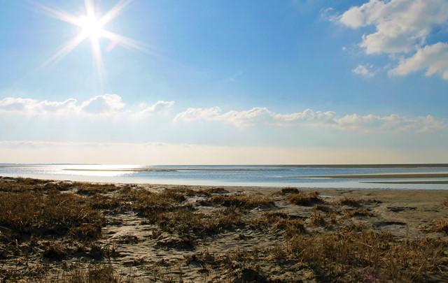 Premier regard sur la Baie de Somme (A) - A la Maye