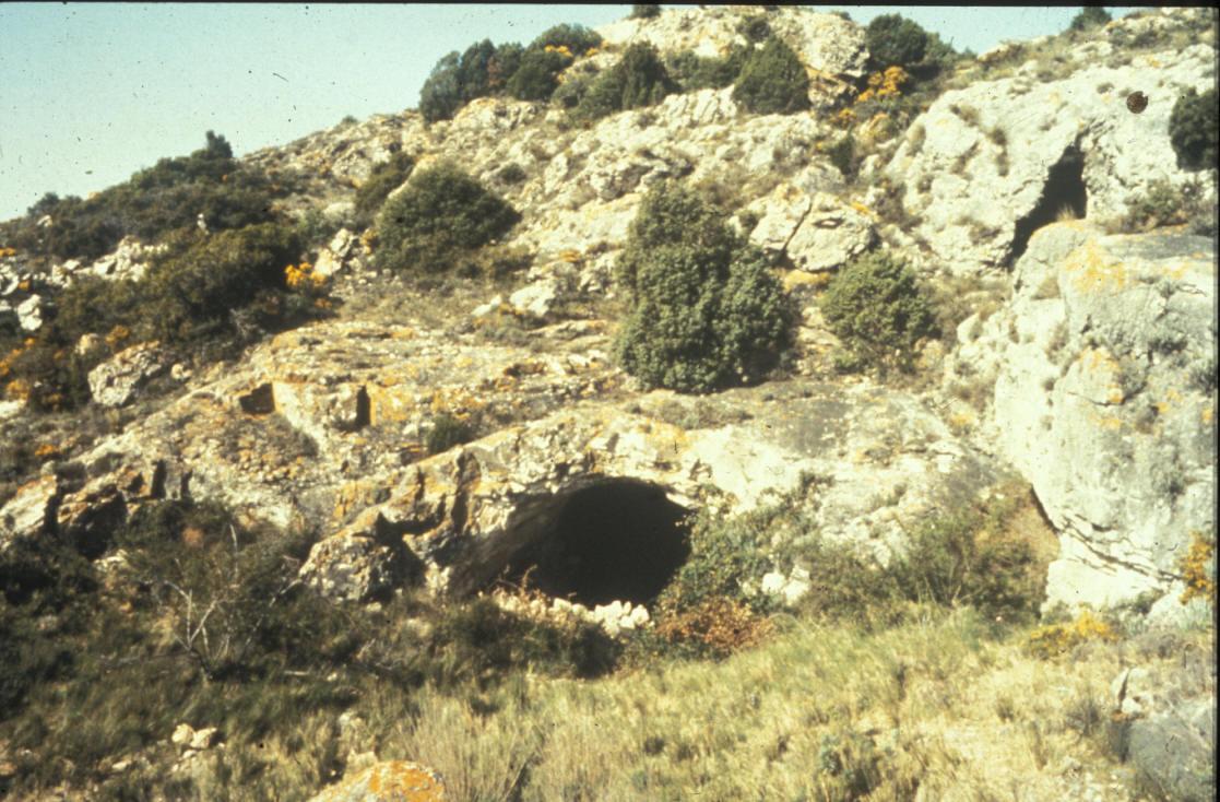 Visite Guidée du musée et de la Grotte