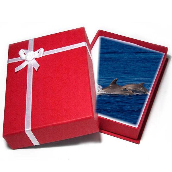 Bon cadeau Découverte des dauphins