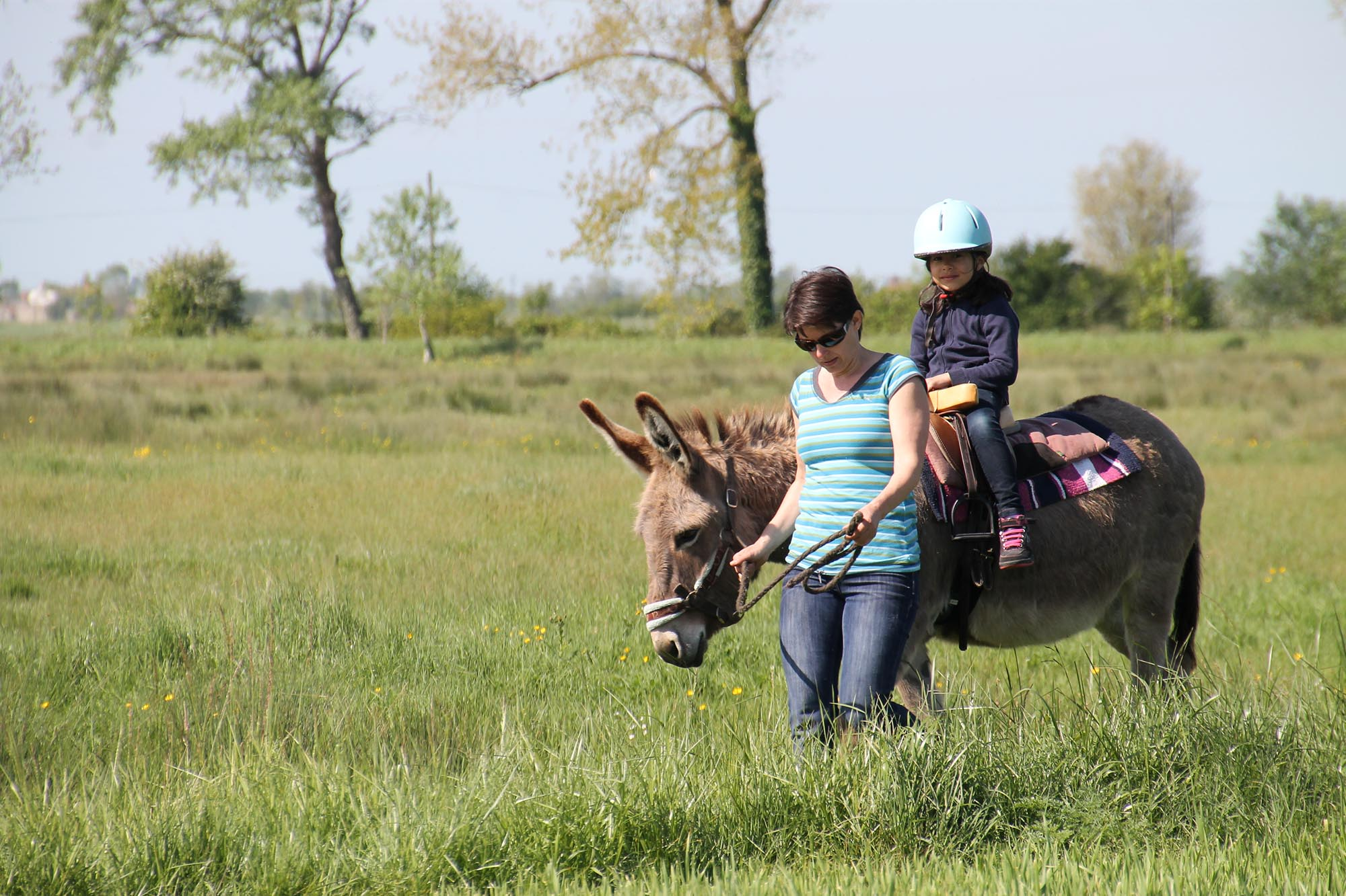 Promenade à dos d'âne