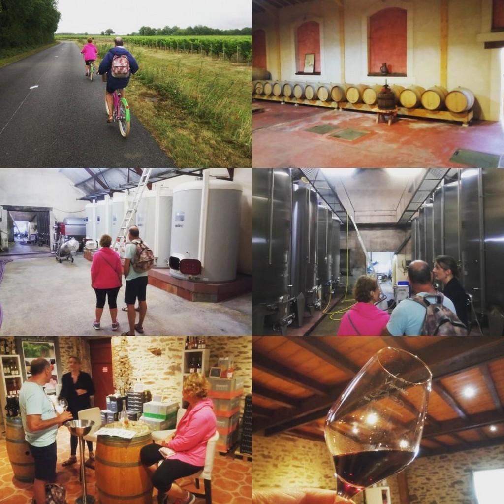Balade vélo dans les vignes de Rosnay