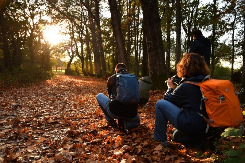 """Stage de photographie """"Paysage d'automne"""""""
